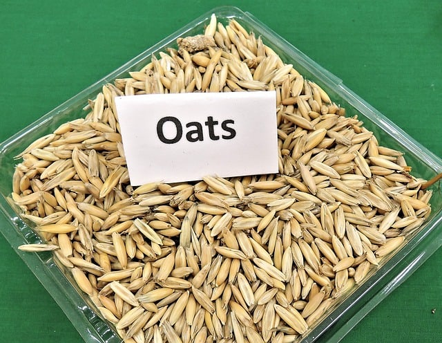How Healthy Are Oats Bar?